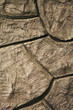Stone Wall Effect / Cement Background Texture.
