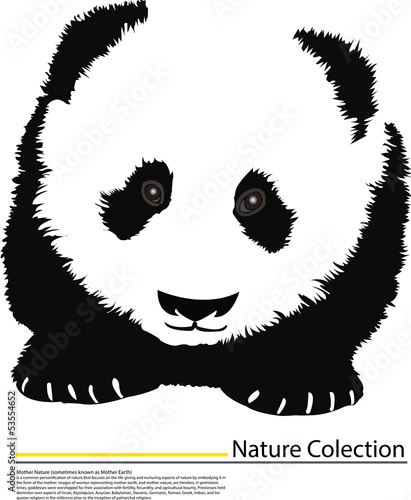 illustration of panda on a white background