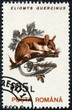 stamp printed in the Romania, shows the Garden dormouse