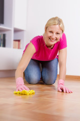 Young Woman Cleaning Home