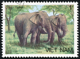 stamp printed in VIETNAM shows Two Asian elephants