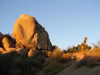 rocks joshua