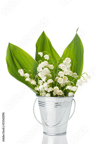 lily of the valley in a bucket