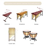 Set of Musical Percussion Instruments