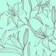 lilies floral seamless pattern