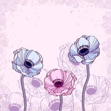 Anemone floral background vector illustration