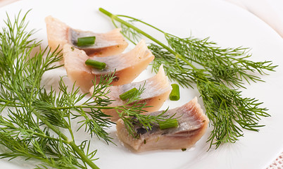 Herring marinaded with fennel on a white plate