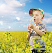 Cute boy playing dandelions on the meadow