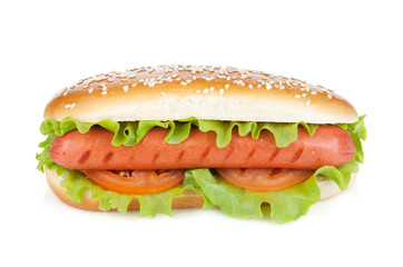 Hot dog with lettuce and tomato slices