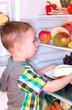 Kleiner Junge holt Torte aus dem Kühlschrank