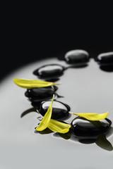 Black Zen stones and flower petals on calm water background