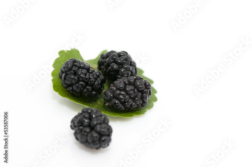 Fresh ripe organic mulberries on white background