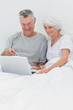 Couple using a laptop together in bed