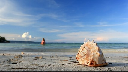 Seashell and girl in bikini on tropical beach, Philippines, Bora