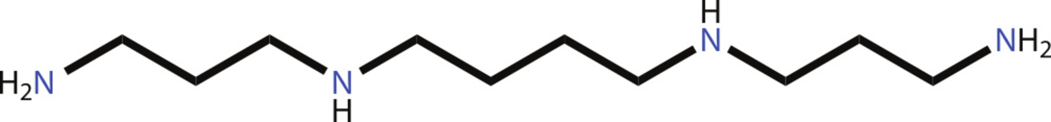 Spermine structural formula
