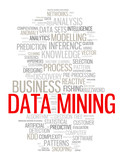 """DATA MINING"" Tag Cloud (web internet business risk management)"