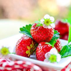 Sommerfrüchte - Erdbeeren