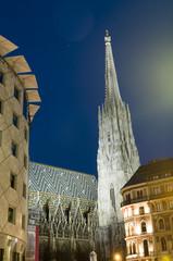 St. Stephens Cathedral  Stephansplatz night scene Vienna Austria