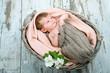 Baby mit Blüte