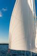 Wasser, Segelboot, Vorsegel