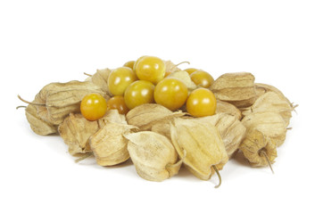 Group of physalis