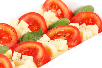 Cheese mozzarella with vegetables in the plate isolated on