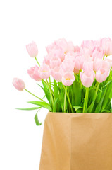 Tulips in the paper bag against white background