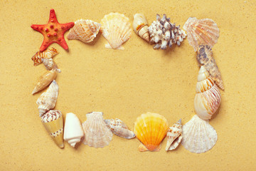 Frame of seashells on the sand