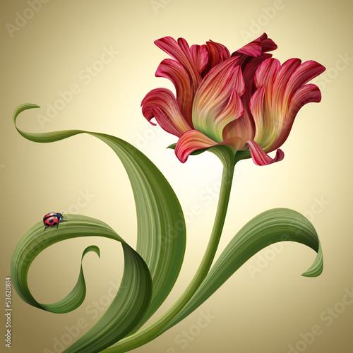 illustration of a beautiful red tulip flower with ladybug
