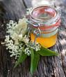 Gelee mit Holunderblüten