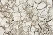 Textura de tierra seca agrietada