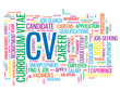 CV Tag Cloud (recruitment employment jobs candidate application)