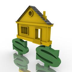 Домик стоит на символах американского доллара