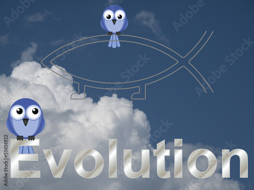 Evolution text and birds