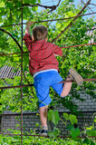 Young boy playing in the garden