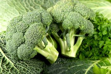 branches of cabbage of a broccoli close up