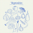Vegetables doodles - squared paper