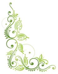 Laub, filigran, Blätter, Ranke, Grüntöne