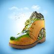 canvas print picture - Shoe
