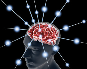 brain, and pulses. process of human thinking