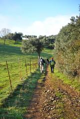 Senderismo, Camino de Santiago, Ruta de la Plata