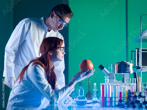 scientists studying a grapefruit