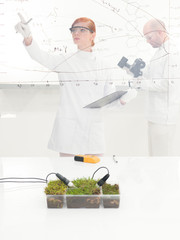 Female scientist monitoring a plant experiment