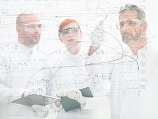 Scientists discussing a diagram