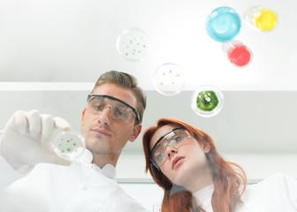 scientists examining petri dish in lab