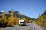 黄葉のカナダ アイスフィールド・パークウェイ