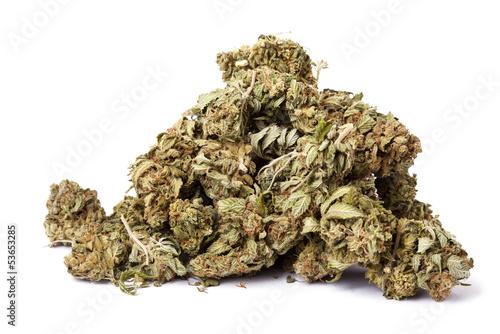 Isolated Marijuana Pile