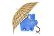 Piggy bank with umbrella on white background
