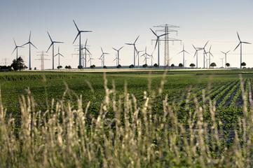 Windräder und Strommasten auf Feld