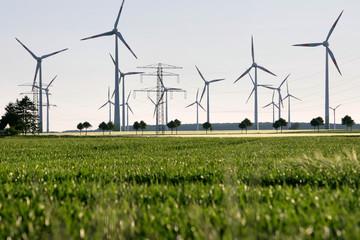 Windräder und Strommasten auf Feld 2